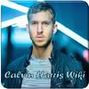 Affiliate Calvin Harris Wiki