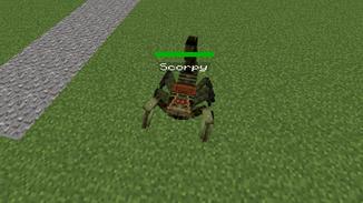 Saddled scorpion