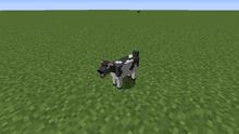 Grey-white goat