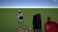 Taming a zebra