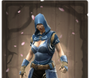 Duelist's Guard