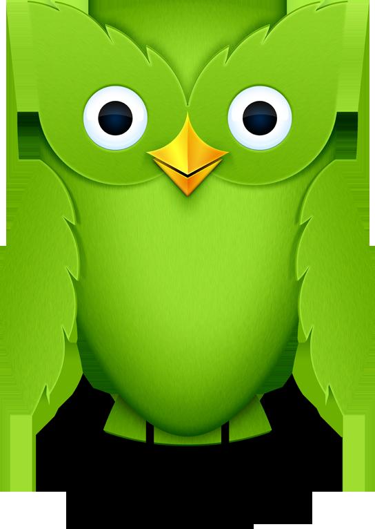 Image - Duolingo-owl.png | Duolingo Wiki | Fandom powered ...