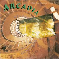 266 goodbye is forever song single duran duran band arcadia wikipedia EMI-PATHE MARCONI · FRANCE · 2010667 PM 102 discography discogs lyric wiki