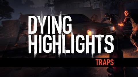 DYING HIGHLIGHT Traps