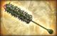 Big Star Weapon - Puncturer