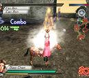 Campaign against Cao Cao