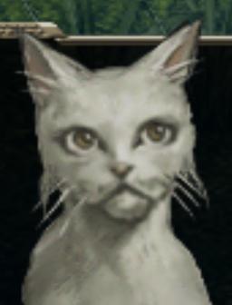 File:Orphaus-cat-zilloll.jpg