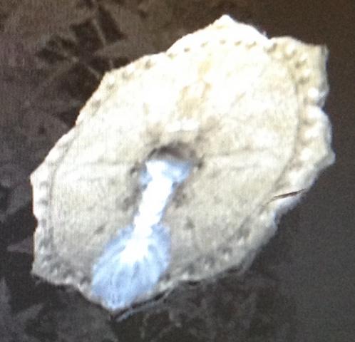 File:Eight-Petal Bronze Mirror (Kessen III).png