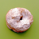File:Sweets Navigator Recipe 69.png