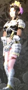 Hera's Armor (Kessen III)