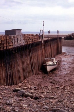 File:Bay of Fundy Low Tide.jpg
