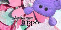 Hydrangea Hippo