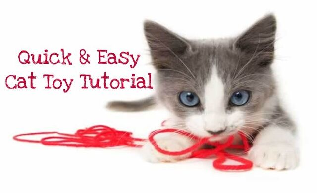 File:How to make a cat toy.jpg