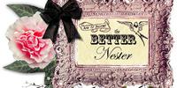 The Better Nester