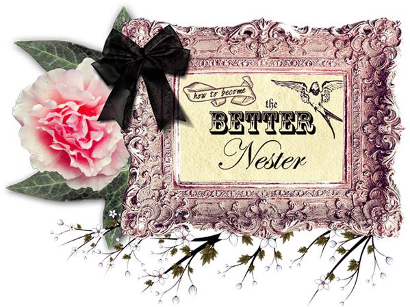 File:TheBetterNester.png