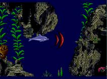 Red sonar 2