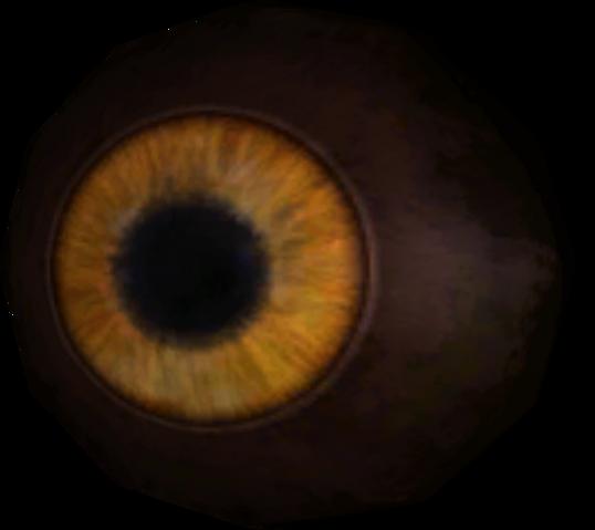 File:TESV Eye Of Sabre Cat.png