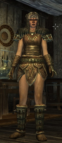 File:Stormcloack Officer Armor Female.png