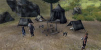 Dagny's Camp