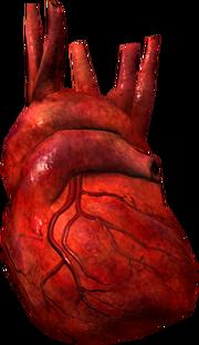 Daedra heart