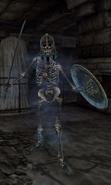 Skeleton of Rielus