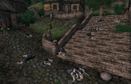 Sheogorath Quest Dogs