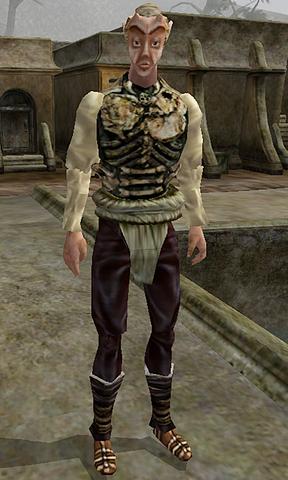 File:Meldor Morrowind.png