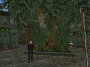 Mournhold Royal Palace Courtyard View