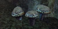 Luminous Russula (Morrowind)