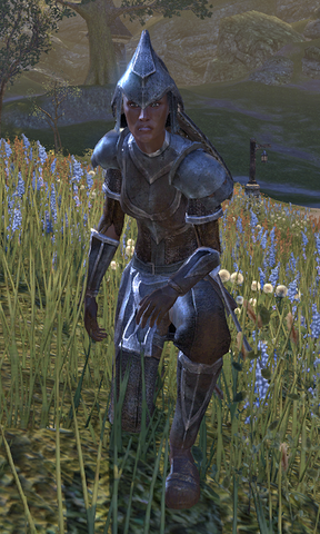 File:Female Alik'r Champion.png