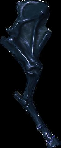 File:Skeletal horse leg.png
