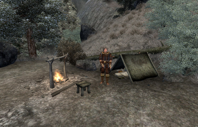 File:Aerin's Camp.png