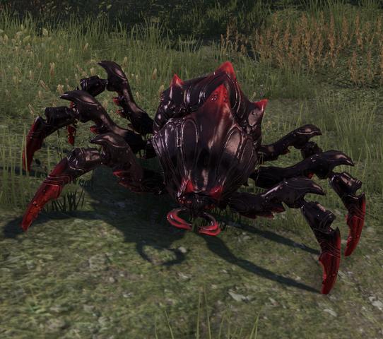 File:Assassin Beetle.png