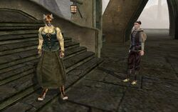 TES3 Morrowind - quest - An Escort to Molag Mar - Paur Maston and Vanjirra reunited