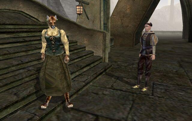 File:TES3 Morrowind - quest - An Escort to Molag Mar - Paur Maston and Vanjirra reunited.jpg