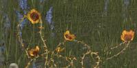 Dragonthorn