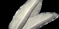 Felsaad Tern Feathers
