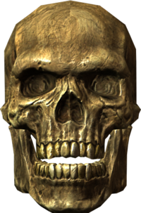 Ancient traveler's skull