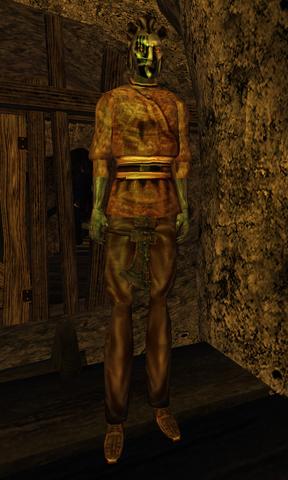 File:TES3 Morrowind - Character - Nivel Madryon.png