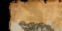 Khenarthi's Roost Treasure Map IV