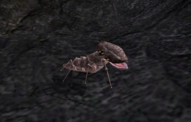 File:Scrib (Morrowind).png