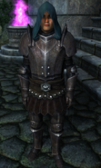 TESIV Guard Battlemage