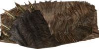 Bear Pelt (Skyrim)