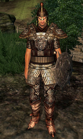 File:Blackwood Company Guard WatersEdge1.png