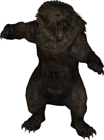 File:LS-model-bear.png