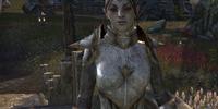 Guard Lieutenant Silen