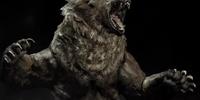 Bear (Skyrim)