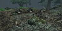 Seran Camp