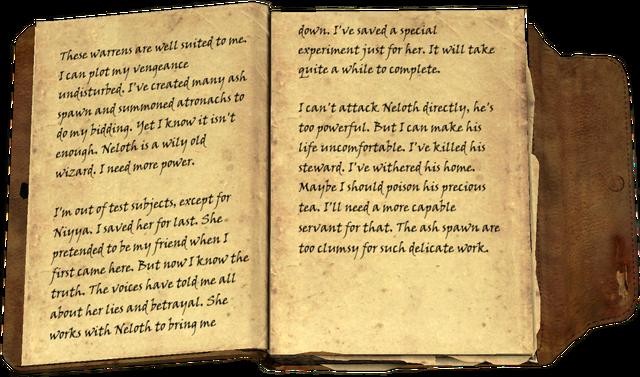 File:Ildari's Journal, vol III.png