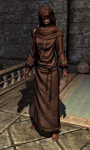 Hooded Brown Robes 00010CFE4